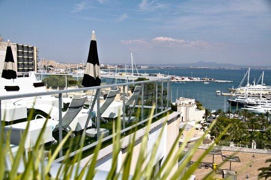 Hotel Feliz: Sun terrace harbour view