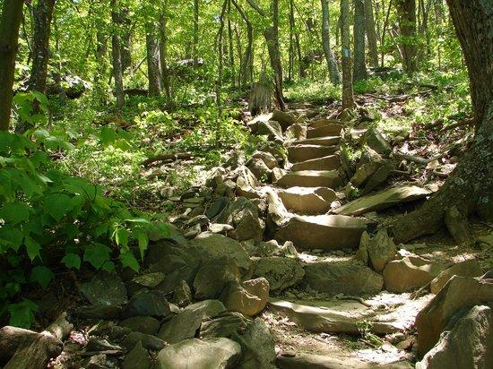 Humpback Rocks Visitor Center and Mountain Farm: hiking trail