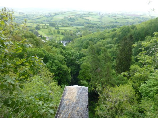 Canonteign Waterfalls and Country Park: Buzzards view point