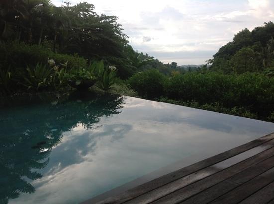 The Damai: prachtig zicht vanuit het privé zwembad van de pool villa
