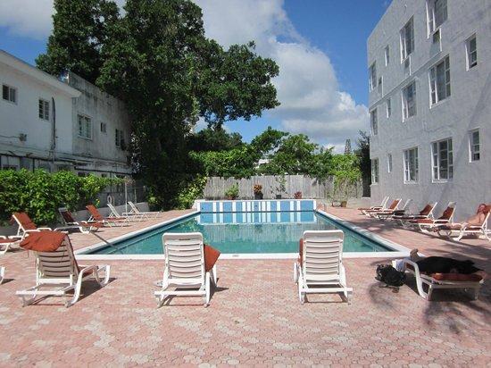 Tropics Hotel & Hostel: Pool