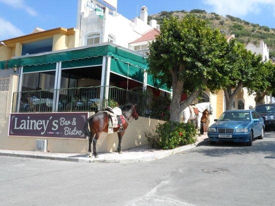 Lainey's Bar & Bistro: Laineys bar & Bistro