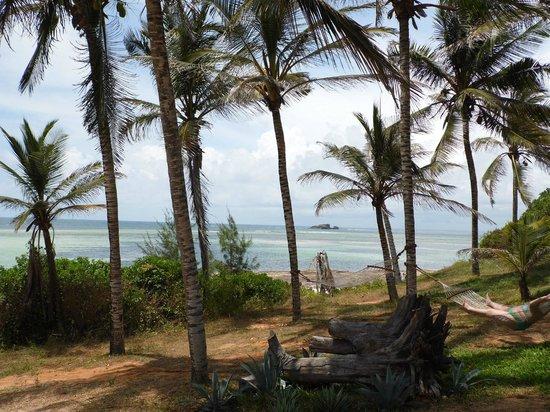 Garoda Resort: le palme nella zona relax