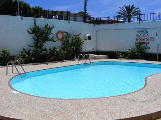 Alsol Las Orquideas Prices Hotel Reviews Playa Del Ingles Spain Tripadvisor
