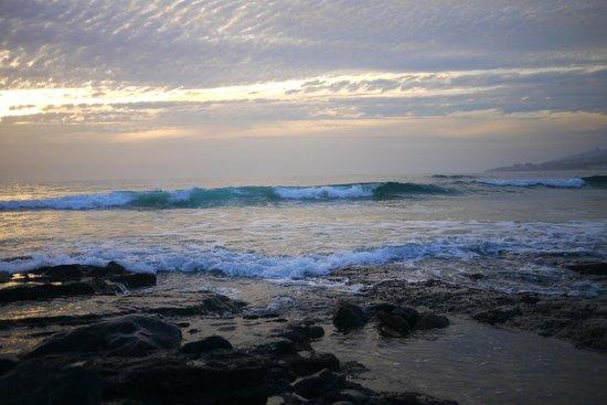 Pure Riders Surf camp: Playa de las Americas (session du soir)