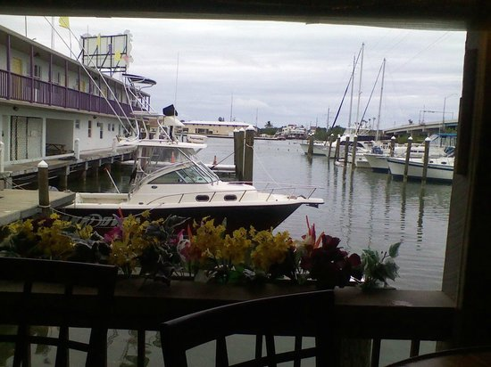 Smugglers Cove Restaurant and Bar: view from our table on the patio