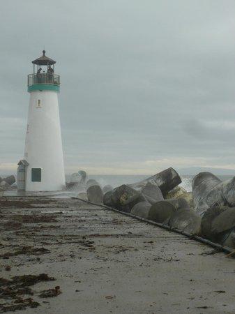 Johnny's Harborside : Just a short walk down the marina