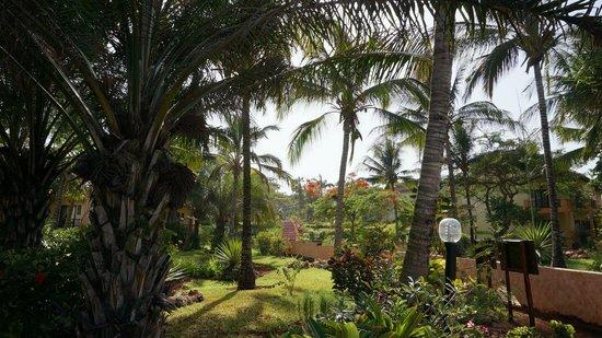 VOI Kiwengwa Resort : jardin