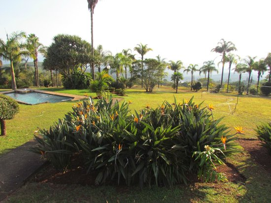 Mashutti Country Lodge: view from room