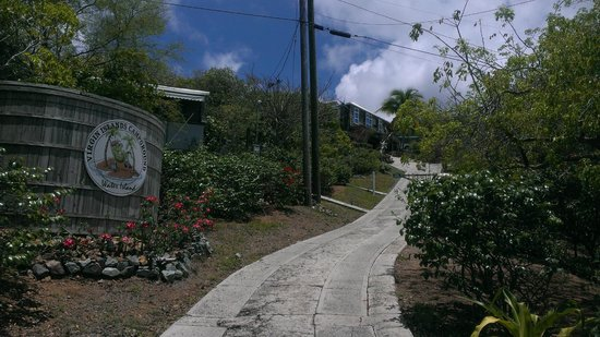 Virgin Islands Campground: View of the Campground from the road