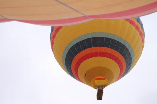 Ürgüp Balon - Picture of Urgup Balloons, Goreme - TripAdvisor
