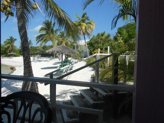 Green Turtle Club & Marina: view from restaurant