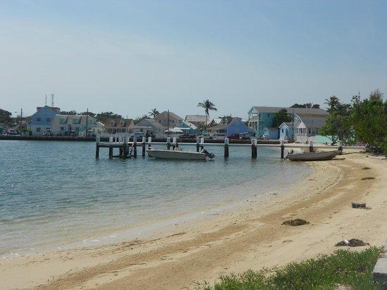 Green Turtle Club & Marina: town