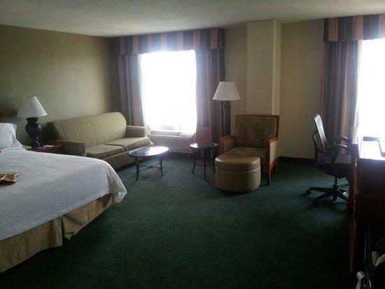 Hilton Garden Inn Atlanta North/Alpharetta : Big room
