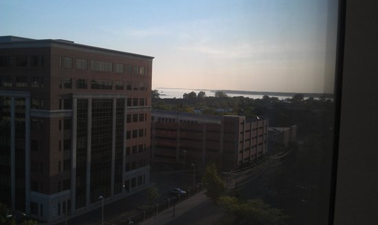 Embassy Suites by Hilton Buffalo: View of lake from the room