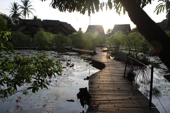Kampung Sumber Alam: Hotel grounds