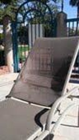 Wyndham Garden Phoenix Midtown: HOTEL POOL LOUNGE CHAIRS WERE ALL BROKEN!!