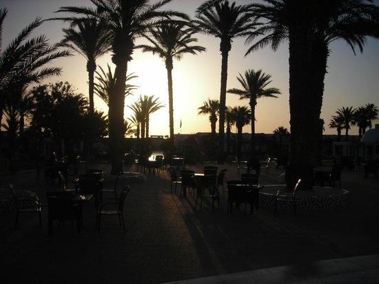 PrimaSol El Mehdi : foto del giardino all'alba
