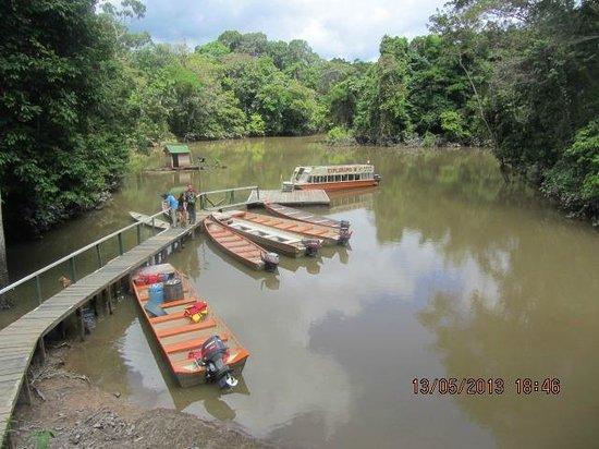 Amazon Explorama Lodges: Anlegesteg