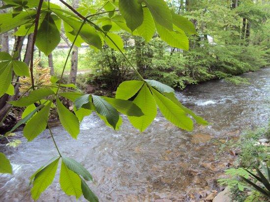 Five Star Inn: Relaxing Johnathan Creek