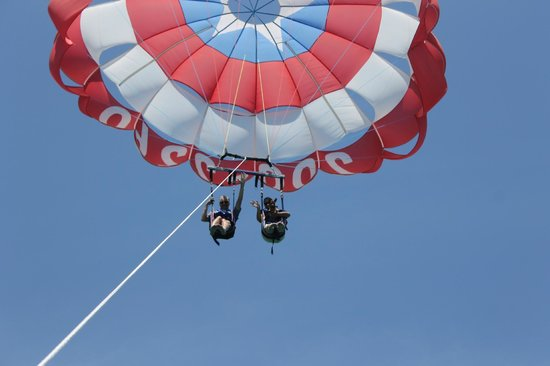 Just Chute Me Parasail: parasailing with our doggie,  P-Man, and he loved it