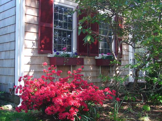 Clapp's Guest House: Quintessential Cape Cod