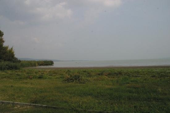 Halaszcsarda : Blick auf den See