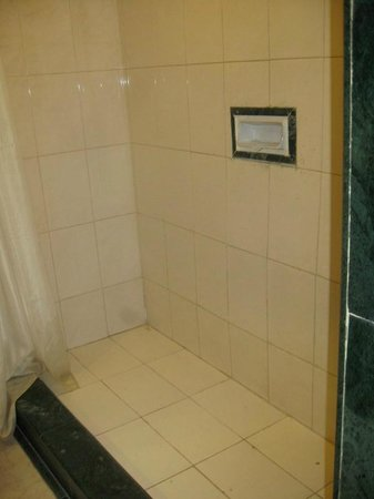 Nahar's Heritage Hotel : The shower area