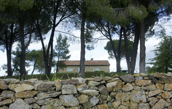 Agriturismo Il Quinto : on the place