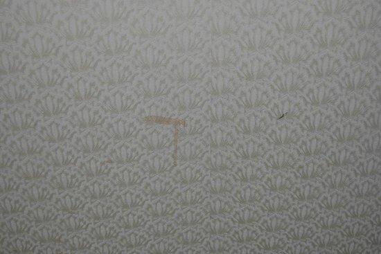 Hongpingguo Chain Hotel Beijing Wangfujing: wall
