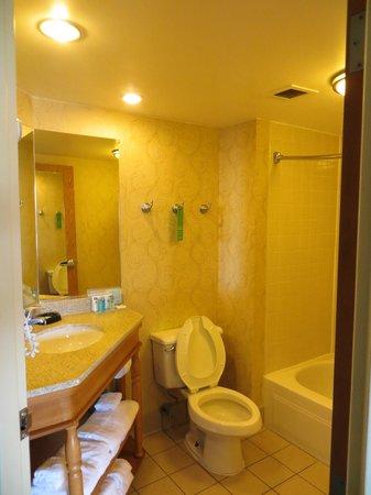 The bathroom - Picture of Hampton Inn Norfolk Naval Base, Norfolk ...