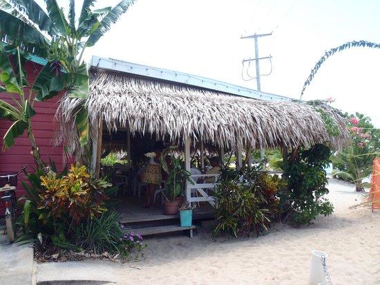 The Shak Beach Cafe: The Shak