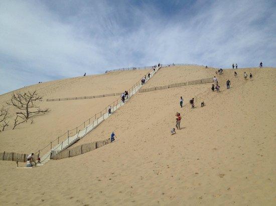 Great view picture of dune du pilat la teste de buch tripadvisor - Hotel dune du pilat starck ...
