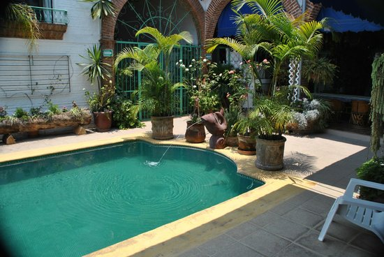 Villa Eucaliptos B & B: High noon is the best time for a dip