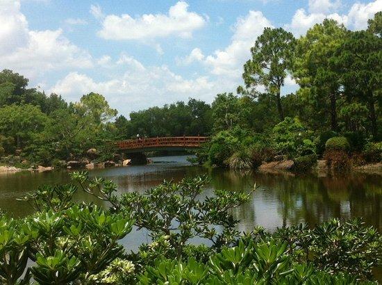 View of bridge at Morikami Gardens - Picture of Morikami Museum ...
