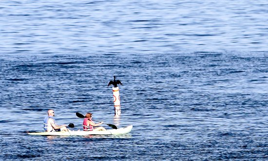 Gulfside Resorts: Kayaking on the Gulf