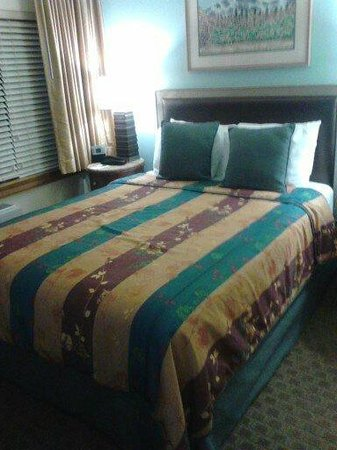Tahoe Seasons Resort: King Size Bed.
