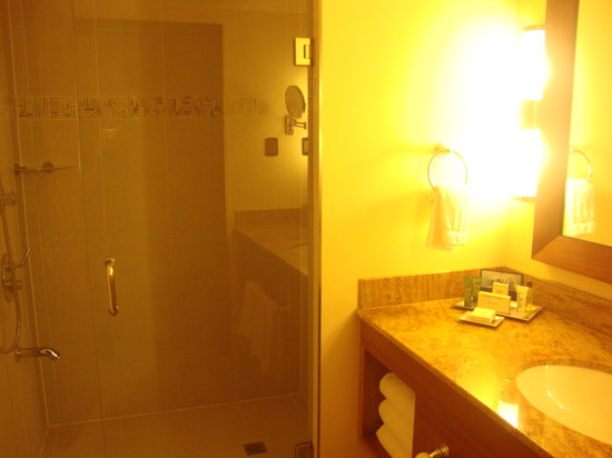 Hilton Trinidad and Conference Centre: Bathroom