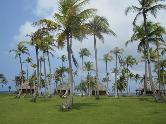 Yandup Island Lodge: The island of the hotel