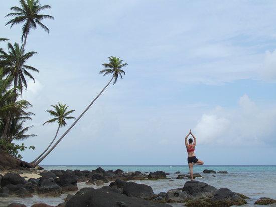 Yemaya Island Hideaway & Spa : Yoga in a natural setting