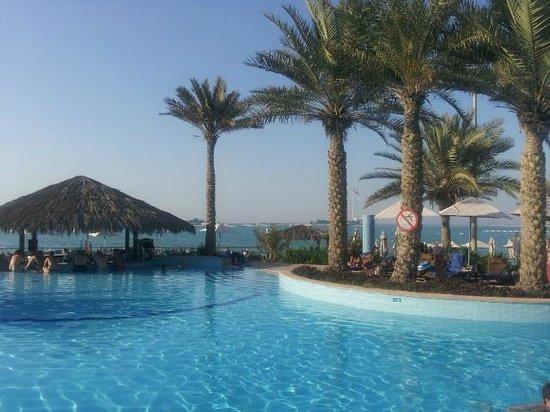 Hilton Abu Dhabi : Piscine..paradisiaque