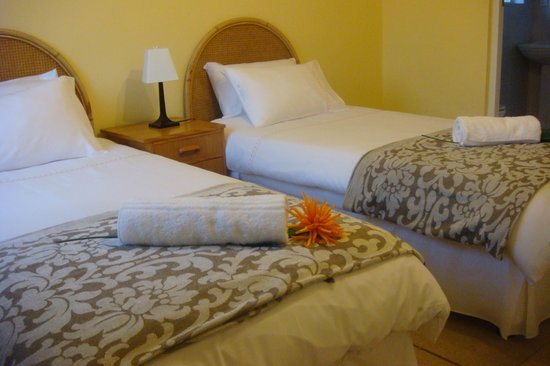 African Cycad Guest House