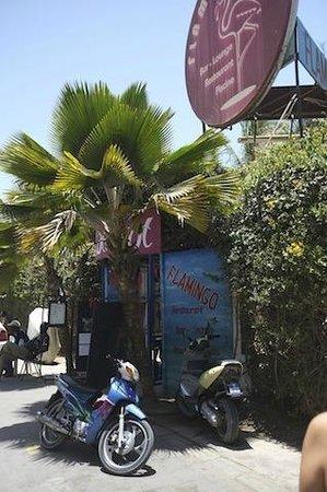 Flamingo Restaurant : Entrance