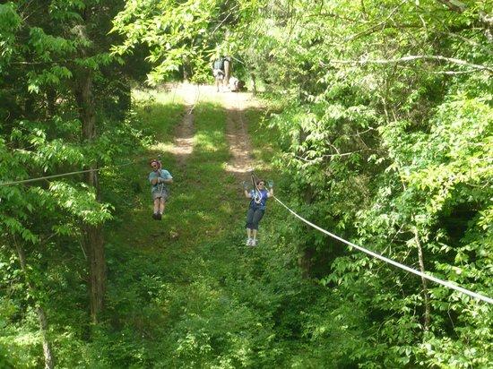 Dagaz Acres Zipline Adventures : Ziplining