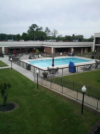 Best Western Culpeper Inn: Pool and patio