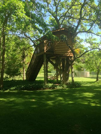 J Bar T Ranch Bed and Breakfast : Tree house for kids