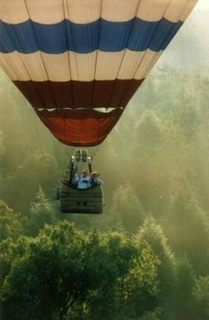Boar's Head Ballooning - Private Flights: Above the trees