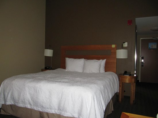 Hampton Inn & Suites St. Louis at Forest Park: Our King Room