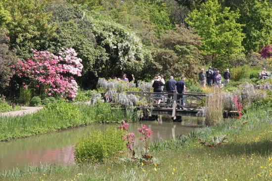 Rhs Garden Wisley Ponds And Little Rivers Run Through The Gardens Most With Fish