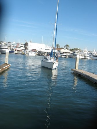 Dock for Lunch